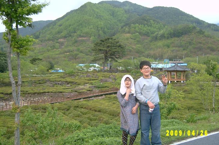 mountain 8.JPG